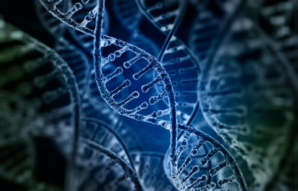 dna, genomics